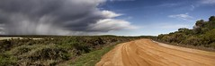 The Road to Jurien Bay, WA (Ben Varley) Tags: road roadtrip trip australia jurien bay jurienbay oz aussie long desert lonely storm clouds dramatic contrast bush australian tripping car auto highway