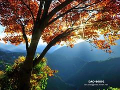 DAO-86892 (Chen Liang Dao  hyperphoto) Tags:   taiwan