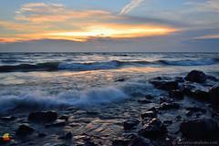 Rocky Shore at Sunset, Lake Erie (DTD_4907) (masinka) Tags: outdoors shore shoreline lakeshore lakeside rush incoming glisten rocks rocky erie lake wny ny newyork western 716 nature beautiful horizon horizonline glow light etbtsy