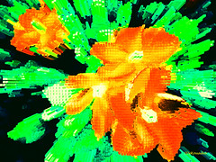 Bright Vinca (Stephenie DeKouadio) Tags: canon outdoor art artistic flower flowers abstract abstractart macro vinca color colour colorful darkandlight green painting orange