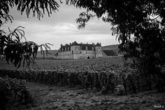 Clos de Vougeot (Frd.C) Tags: vougeot clos bourgogne france cotedor noiretblanc burgundy canon eos 5d lens