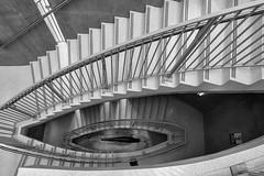 Big Fish (In Wonder Photo) Tags: domke doorsopenmke uwm schooloffreshwatersciences stairs bw monochrome black white markadsit nikon d750 explore