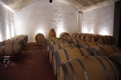 IMGP8539 (Lucifer's Gaze) Tags: pentax k5  spain summer   winery  vinyard  cellar  rioja docarioja  sierradetolono