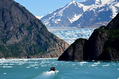 The Sawyer Glacier On The Tracy Arm Fjord, Alaska (Explore Front Page)    Photo Of The Week  For Remember That Moment Group (Butch Osborne) Tags: travel cruise blue vacation usa snow ice nature alaska outdoors boat ship awesome bluesky glacier adventure made explore journey boating fjord fabulous 1001nights majestic frontpage breathtaking magnificent excursion icebergs tracyarm mustsee sawyerglacier explored digitalefotografie frontpa