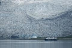 Glacial scale swirl (back stage) Tags: blue texture ice water alaska nationalpark ak glacier glacierbay johnhopkins sony