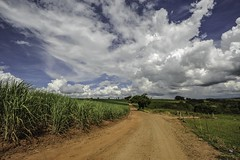 Taking photos along the way (Lus Biggi) Tags: summer brazil sky clouds landscape biggi autofocus contryside frameit nikond700 pse10 photographyforrecreationeliteclub trueexcellence1 trueexcellence2 nikonafsnikkor16~35mmf4gifednvr celebritiesofphotographyforrecreation vigilantphotographersunite photographyforrecreationclassic celebritiesphotographyforrecreation frameitlevel3 frameitlevel2 frameitlevel4 frameitlevel5 frameitlevel6 frameitlevel7 frameitlevel8 frameitlevel9 frameitlevel10