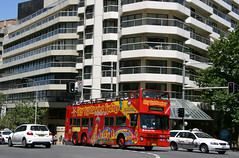 City Sightseeing Sydney MCW Metrobus TV-5654 (426) Wentworth Avenue to College Street at Liverpool Street and Oxford Street, East Sydney, Sydney, N.S.W. Australia. (express000) Tags: sydney australia surryhills darlinghurst mcw sydneyaustralia sightseeingbus eastsydney mcwmetrobus busesinaustralia australianbuses citysightseeingsydney unitedkingdomchassis opentopdoubledeckerbus