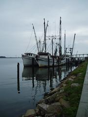 P1010051 (Florida Sea Grant) Tags: fishing oyster apalachicola shrimpboats