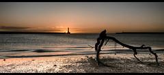 Roker pier SunRise (Alan Dingwall) Tags: sea england sky seascape water beautiful alan clouds landscape photography colours capture skys hitech sunderland roker dingwall d7000