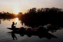 "river of ""kash"" (manwar2010) Tags: sunset people india art nature water canon river geotagged asia flickr tag award chrome contacts come geotag picnik explored damodar earthasia googlechrome  mygearandme"