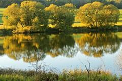 September trees [explored] (Sebastian.Schneider) Tags: hessen dri dynamicrangeincrease exposureblending ldk lahndillkreis lahndill