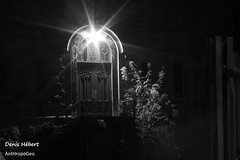 Rue Larivire/Porte (Denis Hbert) Tags: anthropogeo denishbert faubourgmlasse centresud montreal montral qubec quebec canada 2015 monochrome montrealnight montrealcentresudnight montrealfaubourgmlassenight ngc newtopographer newtopographics newtopographic noiretblanc nuitcentresud nuitfaubourgmlasse nuitmontreal nuit november novembre noir bw blackandwhite blackwhite black balcon balcony blanc ville city calme canon extrieur arbres steet shadowy shadows shadow automne darkandlight fall ombrage ombre urban urbaine urbain trees tree porte door quiet