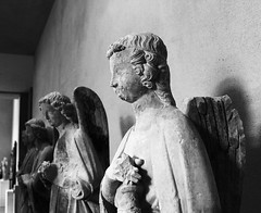 Angels with dirty faces (photography by Paul Reid) Tags: angels angel angelsanddemons louvre artgallery gallery statue paris france 2016 euro2016 blackandwhite mono wings brokenwings paper paperanniversary
