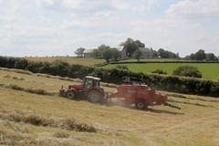 Massey Ferguson 6480 et MF 187 (Philippe-03) Tags: masseyferguson agriculture campagne foin tracteur tractors