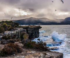Pirate's Bay lookout, Eaglehawk Neck (GeorgeABoyle) Tags: australia hobart tasmania tasminpeninsula tasmanpeninsula ocean eaglehawkneck piratesbay blowhole gulls birds waves clouds cloudy moody