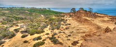 Broken Hill (kirstenscamera) Tags: brokenhilltrail brokenhill california sandiego lajolla delmar torreypines torreypinesgolfcourse blacksbeach sd ca pacificocean westcoast hike trail hill ocean pacific cliffs climb nikon loop nature outdoors outside northfork southfork