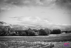 A quick snap of the hills of Ruthin. (AC Photography 828) Tags: nikon nikond80 sigma sigma1850mmf28 outdoor landscape sky snow field wales northwales countryside blackandwhite monochrome ruthin mountains hills