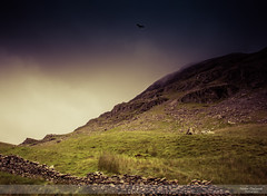 Rocky Craggs and Life (Nathan Dodsworth Photography) Tags: lakedistrict england landscape outdoors rugged craggs light shadow birdofprey mood weather atmospheric clouds drystonewalls
