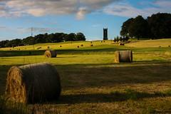 A farmer's castle (Costigano) Tags: farm castle summer field bales outdoor farming haybales kildare cartonhouse carton scenery scenic canoneos