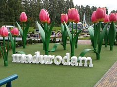 Madurodam (zaqina) Tags: tulp madurodam holland