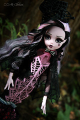 IMG_9845 (Cleo6666) Tags: draculaura collector draculaurasweet1600collectordoll monster high monsterhigh mattel deluxe deluxeedition