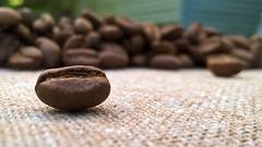 Java (Smile Moon) Tags: macro mondays macromonday thefirstletterofmyname j java coffee beans burlap ethiopian