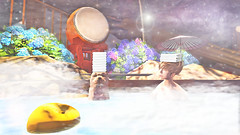 [] enjoy the simple things in life (taeeetae) Tags: onsen hot spring public bath natural sentoh mix chow dog doge pup puppy tae second life sl slife japan japanese water warm warmth fog relaxing winding down