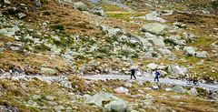 Zillertal_075  Vom-Schlegeisspeicher-zur-Pfitscherjoch-Haus (wenzelfickert) Tags: zillertal umgmayrhofen zillertaleralpen vomschlegeisspeicherzurpfitscherjochhaus radfahrer cyclist tirol landschaft landscape wanderer hiker wandern hiking berge mountains österreich austria menschen leute people weg way wanderweg trail bergradfahrer mountainbiker