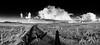 Fair Isle. The road north past Field. (dawadderman) Tags: blackandwhite bw dogs cloudscape cumulusmediocris cumulushumilis