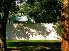 a friendly fence, cream (muffett68 ) Tags: naturalframing ansh scavenger2 fencefriday 365colourscream