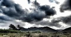 Murcia, Calblanque (JavierDeCuir) Tags: parque sky tree natural palm murcia cielo palmera pea aguila calblanque jordanas covaticas