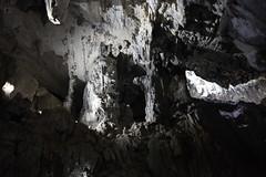 IMG_0669 (damn traveller) Tags: sarawak malaysia cave clearwater mulu
