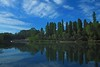 R0014991 (Julian2180) Tags: blue sky cloud tree green art field yellow japan photoshop tokyo pig gallery shots hill poland polska tags more worlds and 13 philipp soe outstanding rapeseed góra klinger zielona supershot lubuskie abigfave platinumphoto anawesomeshot colorphotoaward superaplus aplusphoto babimost theunforgettablepictures colourartaward artlegacy dcdead lightiq