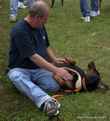 That's the good stuff (kmkruswick) Tags: dru dog doberman dobie 2012 fallpicnic dobermanrescueunlimited