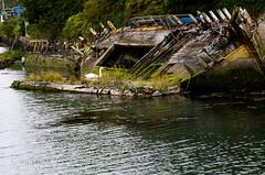 IMGP0447.jpg (screwdriver222) Tags: bird abandoned water creek river boats boat ruins pentax wildlife plymouth devon wharf mooring beached sunk wreck tamron derelict tidal f28 k5 plym boatwreck tamron2875f28 2875 pomphlett