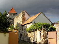 along the old town wall (queencashmere) Tags: germany deutschland pfalz stadtmauer townwall freinsheim palatinate