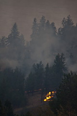 Trepanier Fire 46 (LongInt57) Tags: trees orange canada tree green yellow forest fire grey bc okanagan smoke flames gray burning flame burn valley forestfire fires forests
