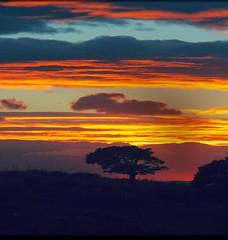Darkness falls. (yokopakumayoko) Tags: sardegna sunset t francesco nuoro tramontidisardegna fotografidisardegna tramontidiyokopakumayoko meravigliositramonti theinspirationgroup tramontoanuoro tramontiinbarbagia tramontisupintarest yokopakumayokosuflickr