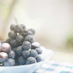 *grape (fangchun15) Tags: 120 6x6 film japan fruit kodak bronica s2 portra400 bronicas2 葡萄