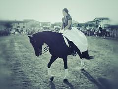Española (andrea::tognoli) Tags: show italy horse girl animals digital donna gente streetphotography olympus espana filter olympuspen cavalli cavallo p3 actionphotography 17mm olympuspenp3 andreatognoli