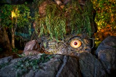 Evil Eye (explore) (Don Sullivan) Tags: world norway rock epcot lowlight disney troll waltdisneyworld walt showcase maelstrom worldshowcase canonef2470mmf28l canoneos5dmarkiii