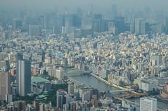 Central Tokyo from Sky Tree (inefekt69) Tags: city travel sky urban tree japan asian tokyo nikon asia cityscape nippon nihon urbandensity tokyoskytree d5100