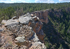 Grand Canyon National Park: Kaibab Formation 8901
