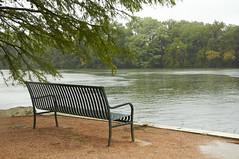 Happy Bench Monday (R Childress) Tags: austin texas ladybirdlake benchmonday