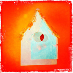 Birdhouse (Thijs Tennekes) Tags: blue red oktober house bird circle birdhouse 2012 thijs thys hipstamatic tennekes