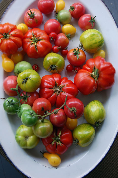 heirloom-tomato-platter