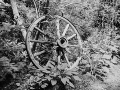 Wagonwheel (chrism229) Tags: ilfordxp2super rodinal 1100 pentax645n 45mmf28 hasselbladx1