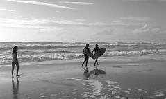 Attraction (Olivr 's pictures) Tags: olivrspictures leica leicax typ113 bw portrait sanguinet ocean soir blackandwhite beach biscarosse