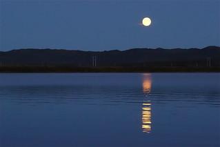 moon glow (in memoriam)