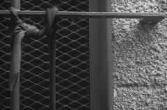 Salida Parque Rodó, Fotoarte. Agosto, 2016 (© fOto) Tags: fotoarte uruguay uruguai montevideo mdeo montevideu parque parquerodó rodó urbanas urban urbana callejeras claudiocigliutti k5 pentax pentaxricoh photowalk